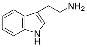 Buy Tryptamines Online
